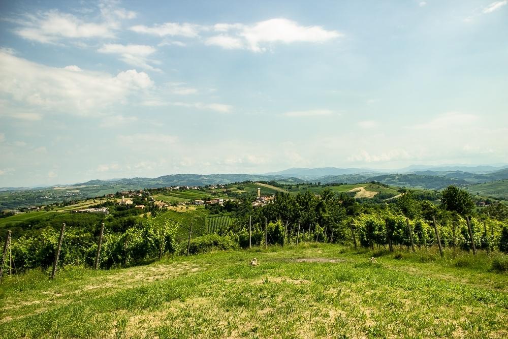 ButtafuocoStorico Giugno2018 1198 Calvis Winery Company