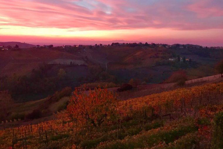 Bricco in Versira in autunno e1561637844728 Azienda Agricola Piovani Massimo