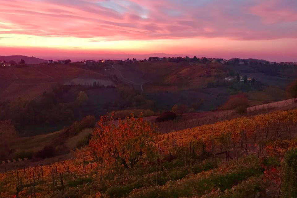 Bricco in Versira in autunno Piovani Massimos Farm