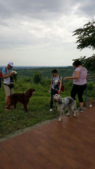 IMG 20160706 WA0068 e1561701899953 Scollinando tra le vigne del Buttafuoco Storico 2017
