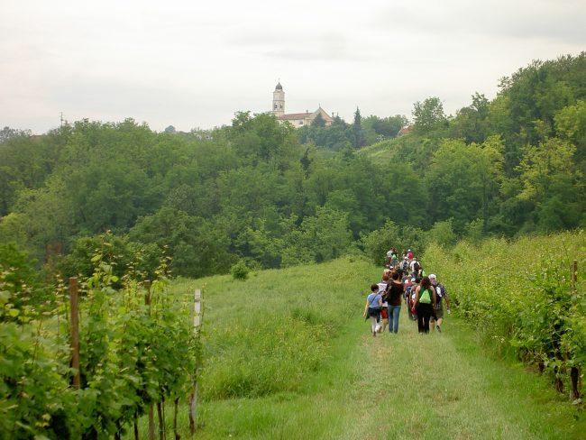 scollinando2013 035 e1561701851703 Scollinando tra le vigne del Buttafuoco Storico 2017