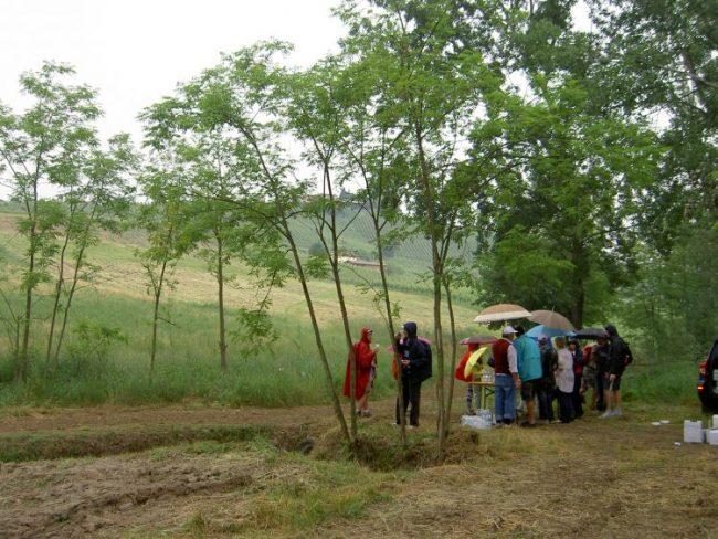 scollinando2013 049 e1561701788599 Scollinando tra le vigne del Buttafuoco Storico 2017